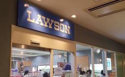 palmfountain-lawson