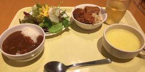 プラナ東京ベイ プラナスタイル 夜食
